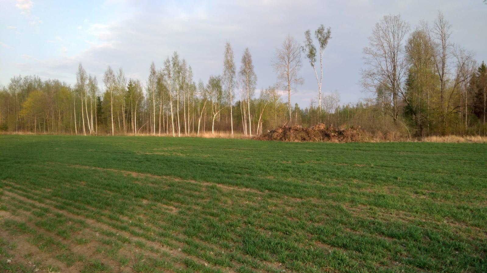 """Paziņojums par paredzētās darbības Derīgo izrakteņu (kūdras) ieguves lauku paplašināšana kūdras atradnē """"Jegorovas purvs"""" ietekmes uz vidi novērtējuma ziņojuma iesniegšanu vides pārraudzības valsts birojam"""